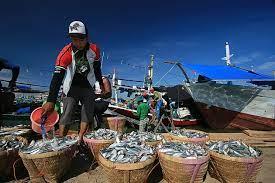 Sektor Perikanan pengaruhi inflasi Kota Manado